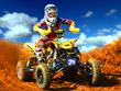 Quad Motorbike Challenge